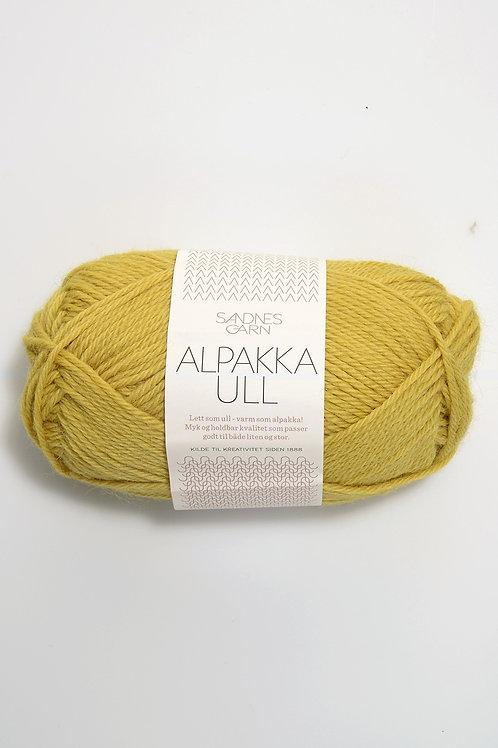 Alpakka Ull 2015 (Majsgul)