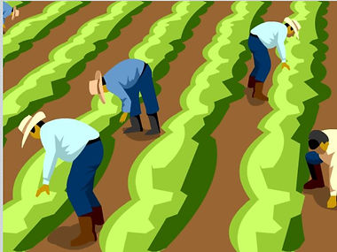 FARM WORKERS.JPG