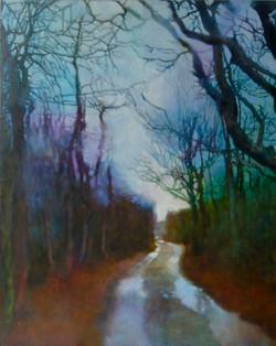 Almanack Pond Road - Daytime