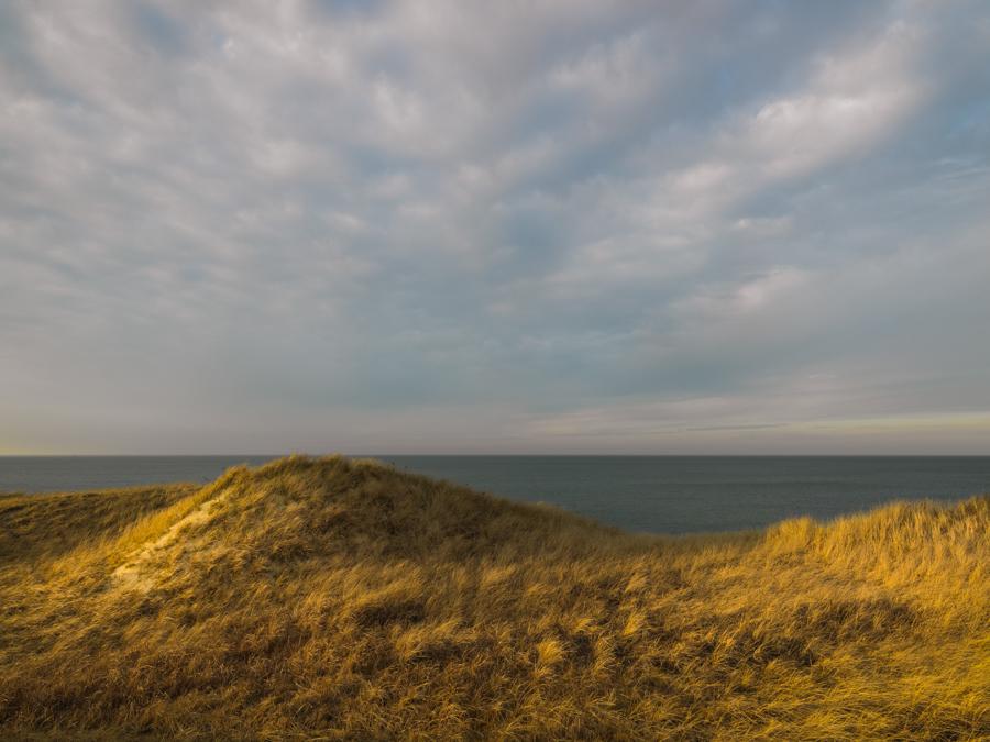 Golden Dune - Dionis