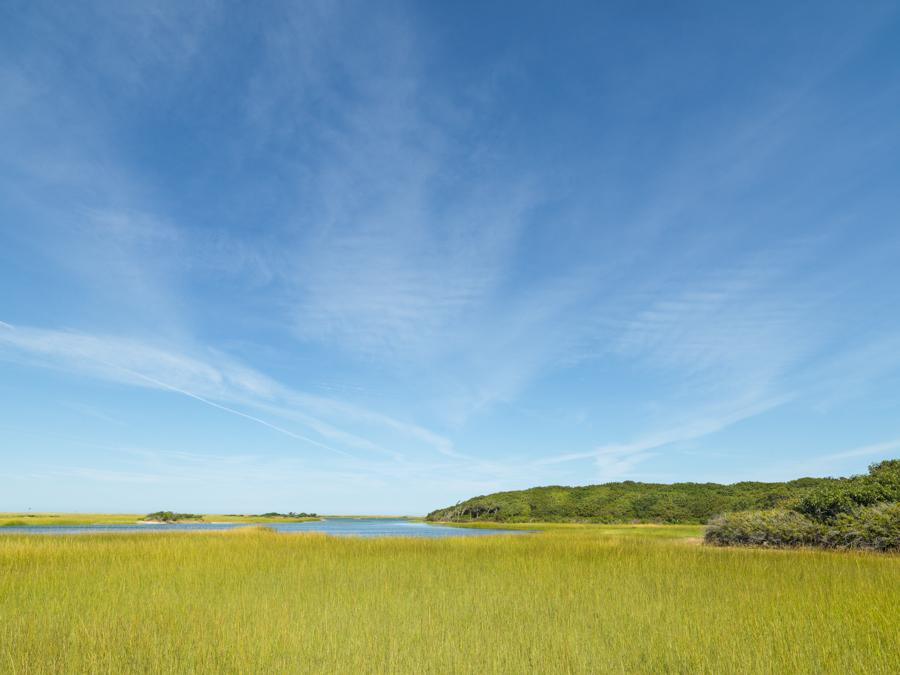 Summer Day at Coskata Inlet