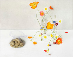poppies_potatoes_d1