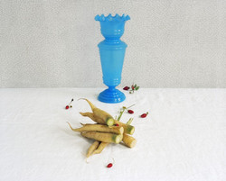 blue_vase_carrots_strawberries_resized-lg.jpg