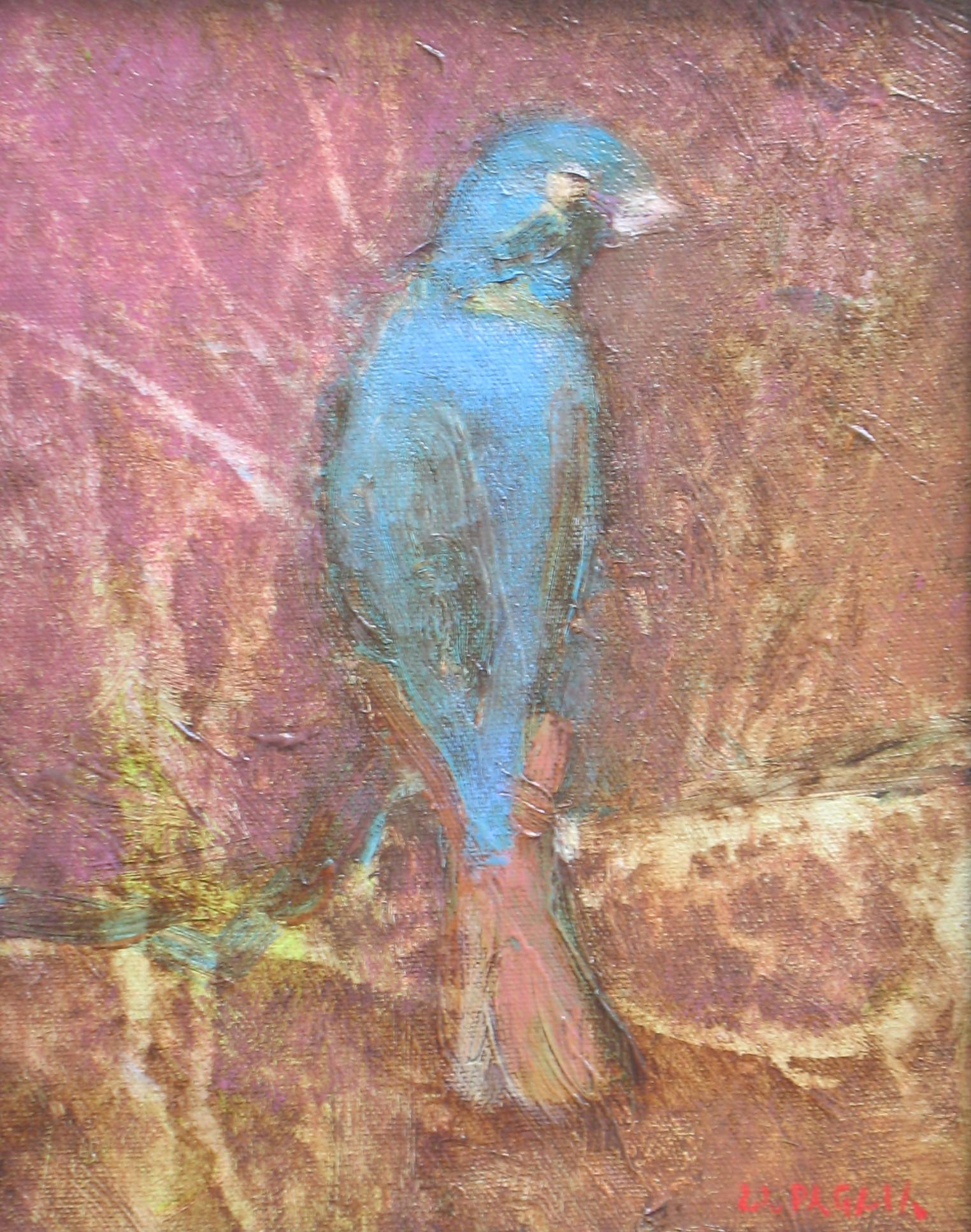 Mr. Birdbird