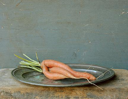 Carrots_resized-lg.jpg