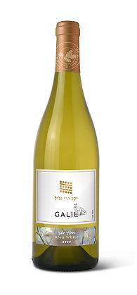 יין אלון לבן יקב הרי גליל.