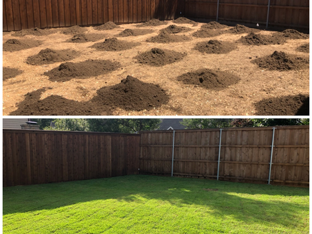 Renovating Your Lawn With A Sod Grass Installation