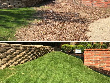 Three Reasons to Improve Your Landscape