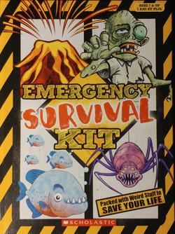 Emergency Survival Box