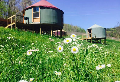 Seven Springs Yurts