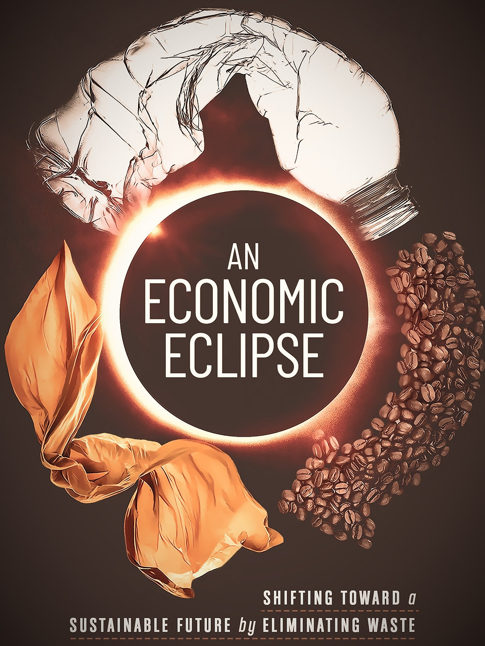 An Economic Eclipse Book Cover