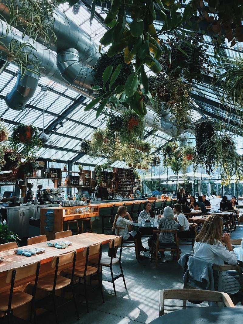 Restaurant inside of a greenhouse