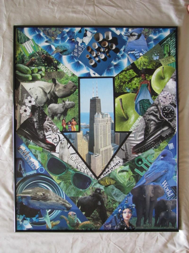 Drawdown Chicago Art Piece