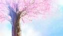 SO-SO - Sakura (So-Ma:p Remix)