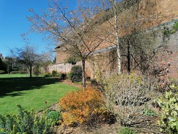 Cumberland Gardens (1) 17.4.21.jpg
