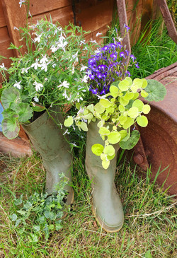 Angie Picton's wellies