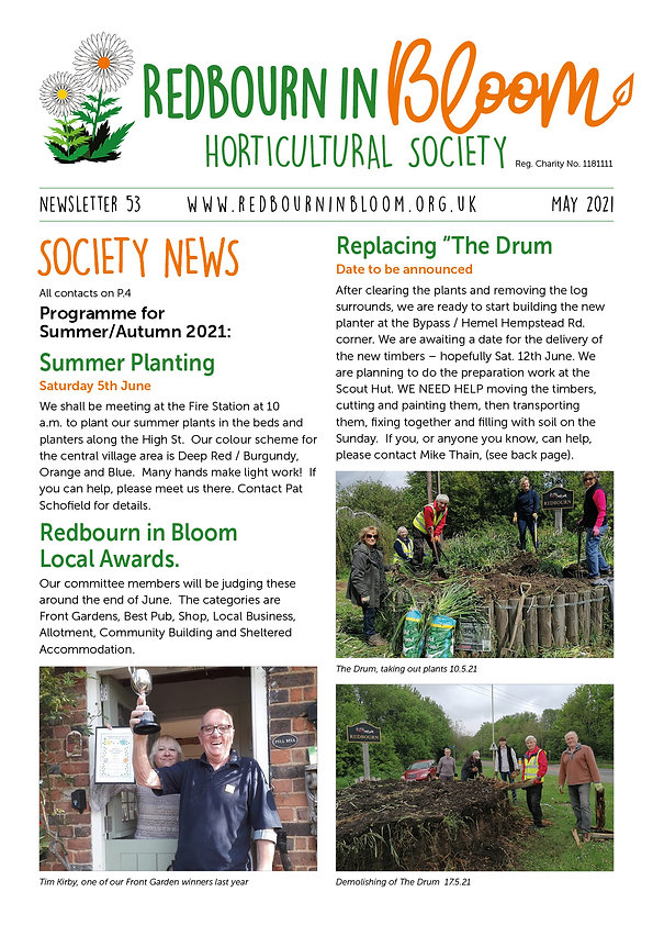 RIB newsletter May 2021 (1).jpg