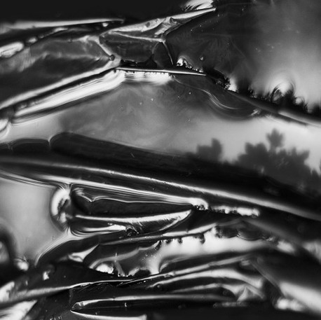 Plastic Nature 3 by Stefania Boiano