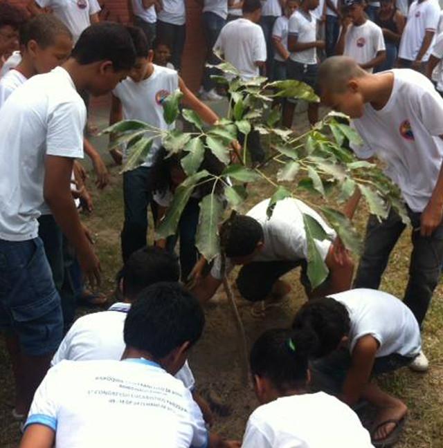 crianças plantando mudas para melhorar o mundo