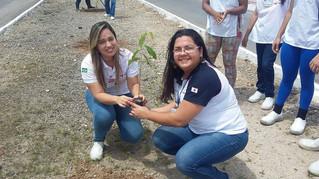 Canto Vivo realiza plantio e distribuição de sementes em empresa