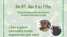 Instituto Canto Vivo realiza Feira de Adoção em Aracaju