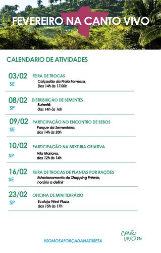Programe-se: Calendário de atividades de fevereiro