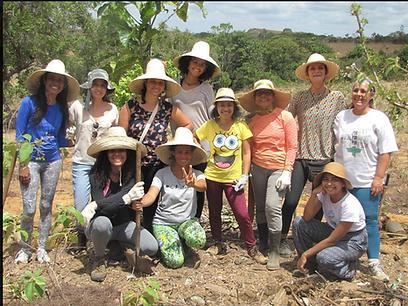 Voluntarios corajosos, ecologicos ambientalistas platando árvores para reflorestar a mata enteira do nordeste do brasil