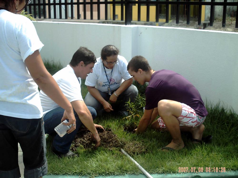 voluntarios plantando árvores
