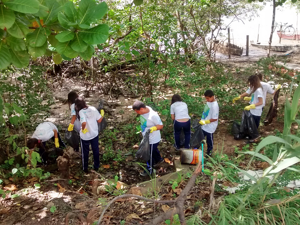 voluntarios limpando o mangue do rio