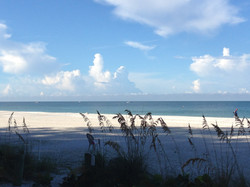 Beach Angelinos