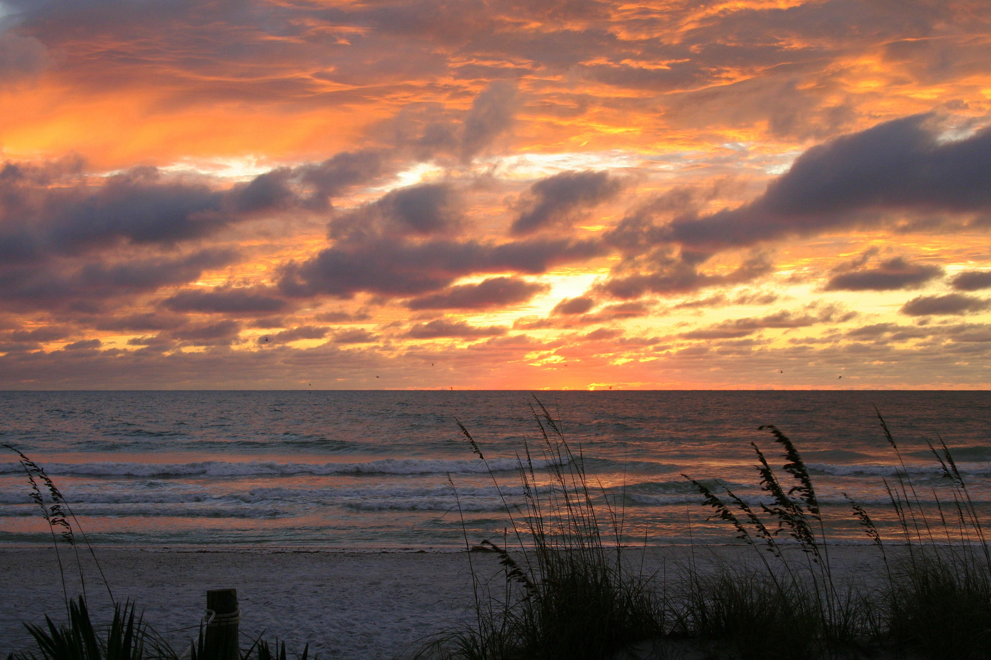 2008 Sunset