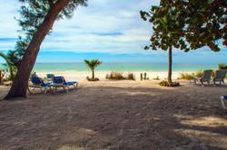 Beach viewIMG_0072