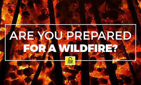 6 Steps to Wildfire Protection