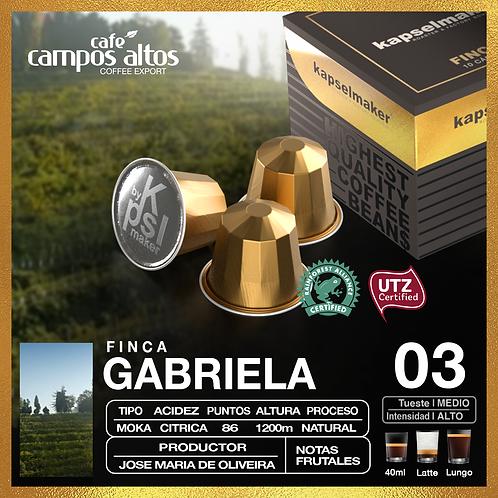 Brasil Gabriela - Moka - Fincas del Mundo x 10 capsulas