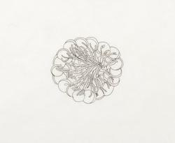 Liz Hamilton Quay | Pen & Ink