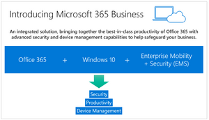 What is Microsoft 365 Business