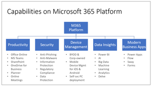 Capabilities on Microsoft 365 Business
