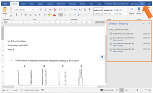 Version history in Microsoft Word doc
