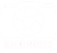 logo-belleimages-photographe-belle-ile-b