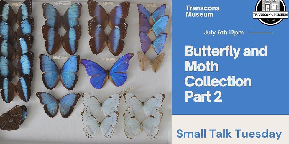 Virtual Small Talk: Butterflies and Moths Part 2