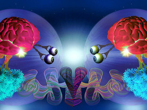 Somatic Intelligence: understanding the mind-body connection