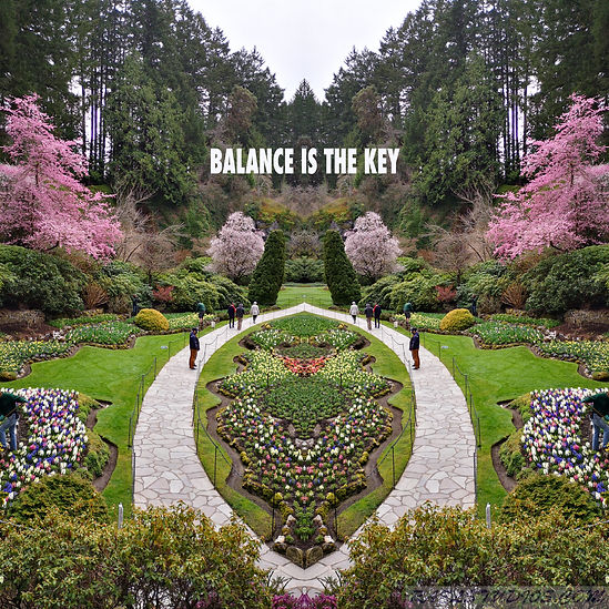 BALANCE IS THE KEY. 2.jpg