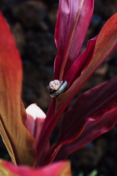 Bailey Livingston Photography, Salt Lake City Wedding Photographer3446.jpg