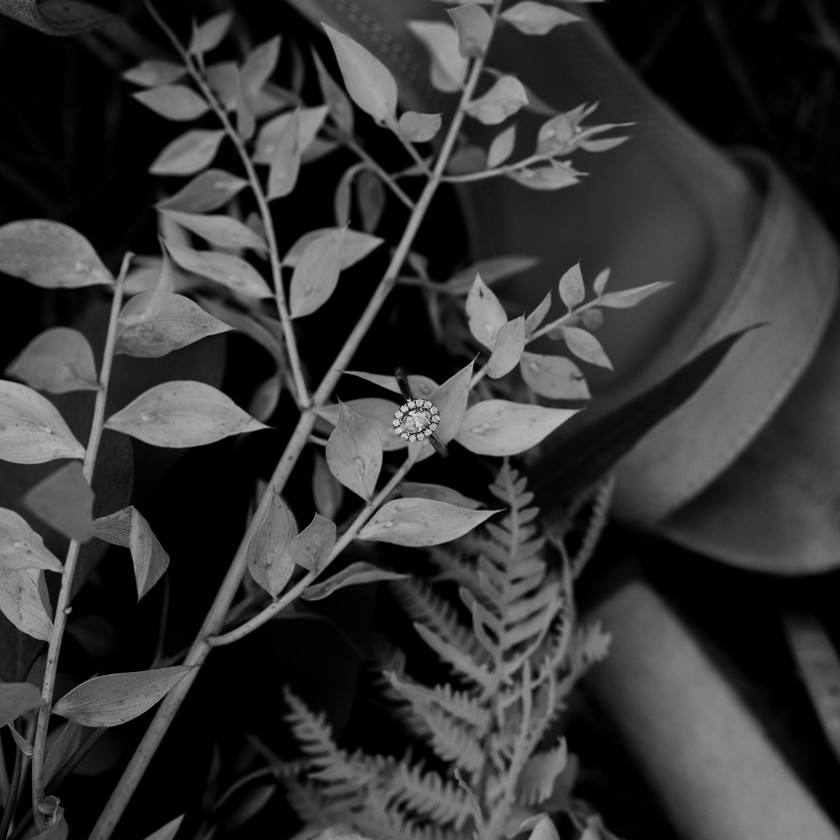 Salt Lake City wedding photographer, park city wedding photographer, Herriman wedding photographer, draper wedding photographer, Herriman wedding photographer, orem wedding photographer, bountiful wedding photographer, orem wedding photographer, pleasant grove wedding photographer, salt lake engagement photographer, draper engagement photographer, Salt Lake City engagement photographer, park city utah engagement photographer, draper lifestyle photographer, davis county wedding photographer, kaysville wedding photographer, ogden wedding photographer, antelope island bridal session, antelope island engagement session, layton utah engagement photographer, Salt Lake City elopement, draper elopement, park city elopement, medway utah wedding photographer, Morgan utah wedding photographer, Morgan utah engagement photographer, Salt Lake City bridal photos, Salt Lake City bridal photographer, Draper Utah bridal photos, Salt Lake City family photographer, Salt Lake City maternity photographer, draper family photographer, draper maternity photographer, draper lifestyle photographer, provo family photographer, provo maternity photographer, orem family photographer, orem maternity photographer, davis county family photographer, davis county maternity photographer, draper portrait photographer, Salt Lake City portrait photographer, kaysville family photographer, kaysville maternity photographer, kaysville portrait photographer, Herriman portrait photographer, Herriman family photographer, Herriman maternity photographer, orem wedding photographer, Lehi wedding photographer, orem photographer, Lehi photographer