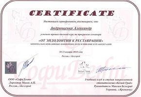 Сертификат Андрющенко А. Е.