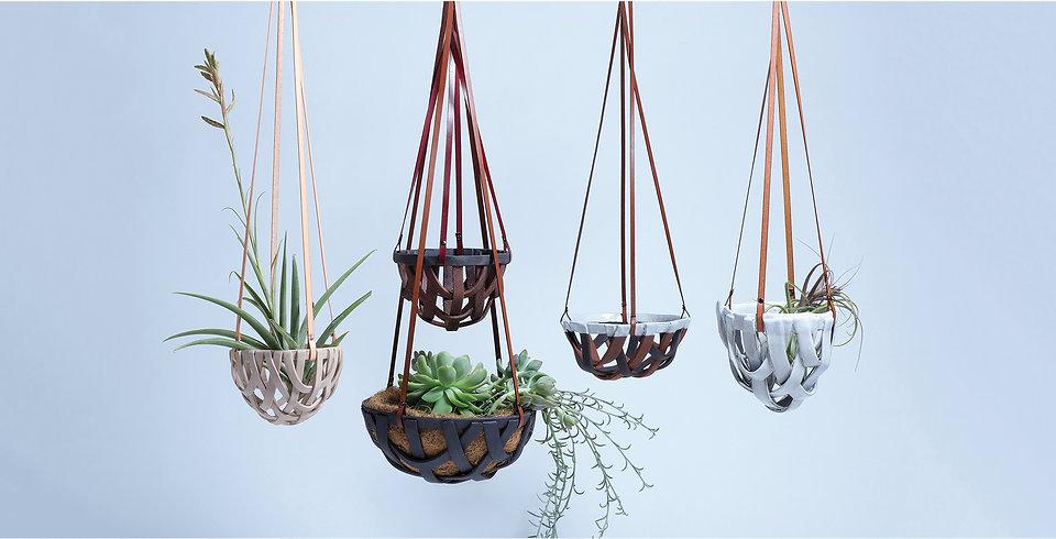 group_hang basket.jpg