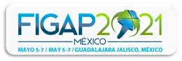 FIGAP_meksika.jpg