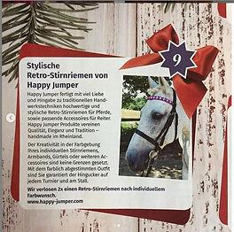 weihnachtsgewinnspielRRP_edited.jpg