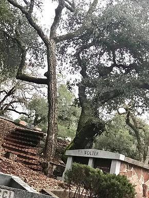 Sonoma Cemetery