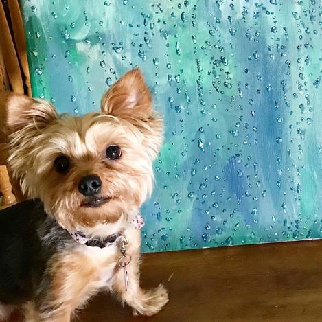 Rain Painting